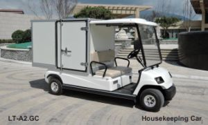 2 Person Electric Hotel Cart with Cargo Box pictures & photos