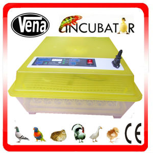 Hot Selling Newly Design Full Automatic Mini Duck Egg Incubator pictures & photos