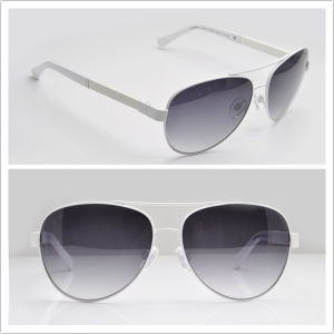 CH 4195 Original Sunglasses / Famous Brand Name Sunglases pictures & photos