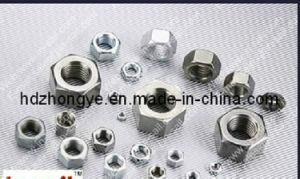 Full Size Stainless Steel Nut/ Hex Nut DIN934 pictures & photos