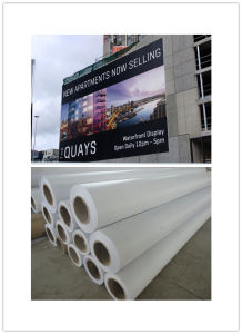 260g Matte Glossy Solvent PVC Lona Flex Banner pictures & photos