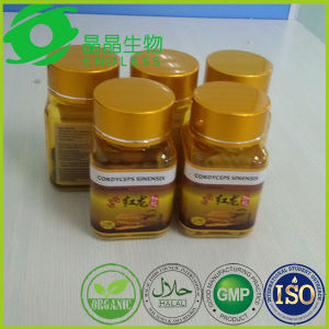 Dongchongxiacao Herbal Penis Enlargement Capsules pictures & photos
