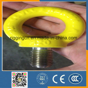 PVC Coated Ss316 Eye Bolt pictures & photos