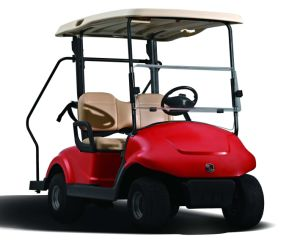Dongfeng Motor Best Electric Go Cart Golf Cart with Caddie Stand Secure Hand pictures & photos