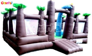 Treasure Island Theme Activity Bouncy Castle/Inflatable Bouncer Combo Bb109 pictures & photos