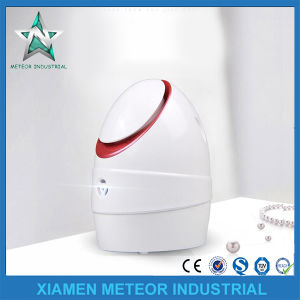 Home Use Portable Beauty Instrument Anion Facial Steam Machine pictures & photos