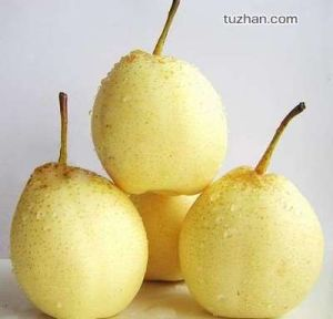 Chinese Fresh Ya Pear with High Quality pictures & photos