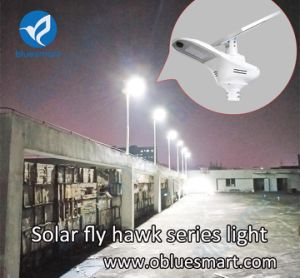 Bluesmart Integrated Solar Street Lamp LED Garden Light with High Power pictures & photos