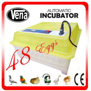 Newest Va-48 High Quality Automatic Humidity Transport Incubator pictures & photos