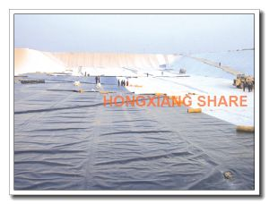 LLDPE - Linear Low Density Polyethylene - Smooth Geomembrane pictures & photos