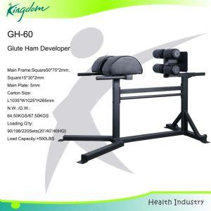 Crossfit Glute Ham Developer/GHD/Roman Chair (GH-60) pictures & photos