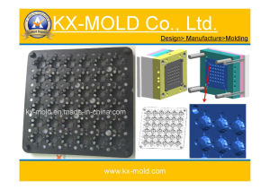 Plastic Tray Injection Mould pictures & photos