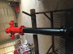 3 Way Dry Barrel Pillar Ductile Iron Fire Hydrant pictures & photos