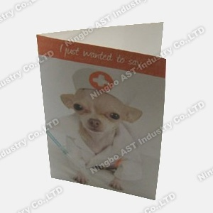 Recording Cards, Recordable Post Cards, Greeting Cards pictures & photos