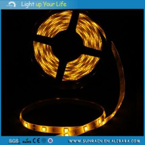 Sunrain LED Strip Light IP44 100m/Roll 12V Outdoor Light Car Light pictures & photos