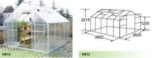 Aluminium Hobby Greenhouse for Garden (W812) pictures & photos