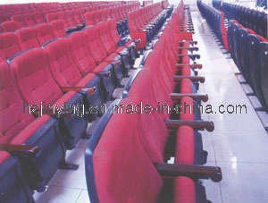 Cinema Seating with CE and SGS Certificate (JY-8866)