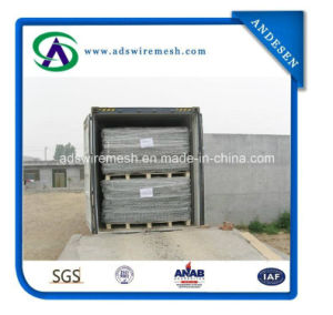 80mmx100mm Galvanized Gabion Box 1m*1m*2m pictures & photos