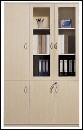 Office Furniture Storage File Cabinet (TL-3005)