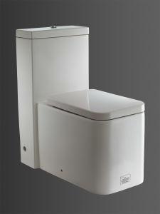 Toilet (OP-W777)