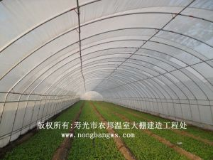 Low Cost Tropical Agricultural Greenhouse pictures & photos
