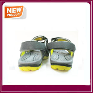 New Fashion Flat Sandal Shoes for Men pictures & photos