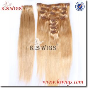 Clip Hair Russian Remy Human Hair Extension pictures & photos