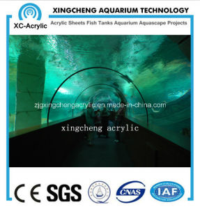 Aquarium Project UV Plastics Tunnel pictures & photos
