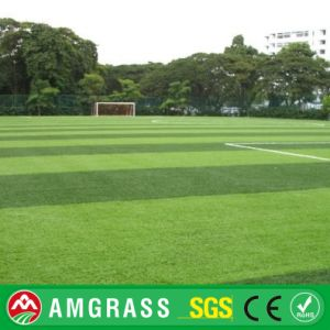 Durable Football Artificial Turf and Outdoor Soccer Artificial Grass pictures & photos