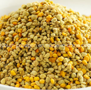 Bee Pollen, Top Leve 100% Rare Natural Wild Hawthorn Bee Pollen, No Antibiotics, No Pesticides, No Pathogenic Bacteria, Anticancer, Prolong Life, Health Food pictures & photos