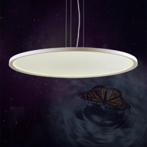 Indoor Dimmable White Aluminum and Acrylic Round Ultra Slim LED Panel Light pictures & photos