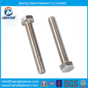 DIN931 High Strengt Carbon Steel and Stainless Steel Hex Bolt pictures & photos