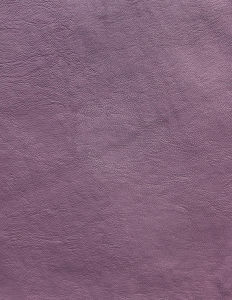 Emboss Design Leather 046
