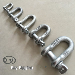 Forged Steel Anchor Shackle pictures & photos
