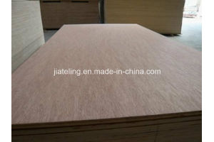 Eucalyptus Core Bintangor Face Plywood pictures & photos