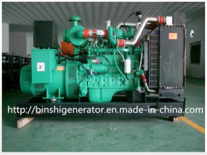 250kw Biogas Power Generator Sets pictures & photos