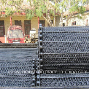Conveyor Mesh Belt pictures & photos