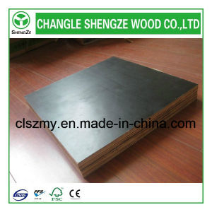 Shengze Wood Manufactured Film Faced Plywood pictures & photos