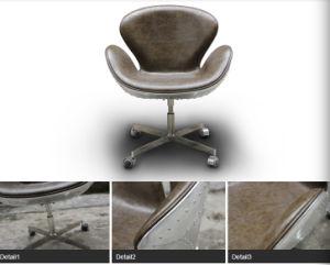 Fiberglass Frame Italian Leather Aluminium Cover Swan Chair pictures & photos