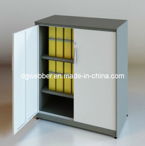 Metal Swing Door Cabinet for Files (SV-SW1046) pictures & photos