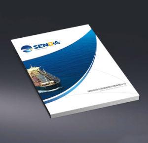 China Shenzhen Sea Ocean FCL LCL Transportation Service