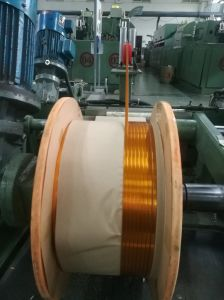 Kapton 150fcr019/Fn019 Magnet Wire 2.4*6.1mm Disai pictures & photos
