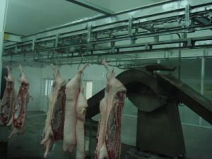 Carcass Processing Line Made in China pictures & photos