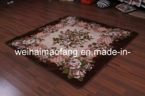 Raschel Mink Decoration Picnic Carpet (NMQ-CPT012) pictures & photos