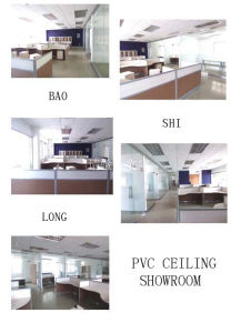 Most Popularest PVC Ceiling Panel (JT-HY-36)