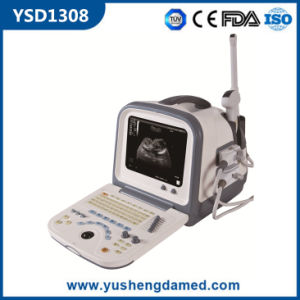 Ysd1308 Hot Sale PC Based Digital Portable 3D Ultrasound pictures & photos
