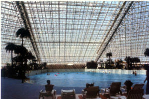 Steel Structure Swimming Pool (SSW-69) pictures & photos