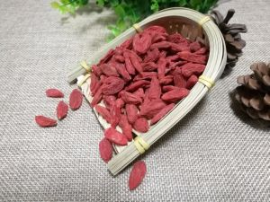 Best Quality Goji Berries pictures & photos
