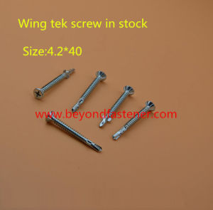 Self Drilling Screw DIN7504k Roofing Screw pictures & photos