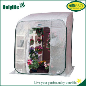 Onlylife PVC Pop up Mini Garden Greenhouse for Flowers Vegetables pictures & photos